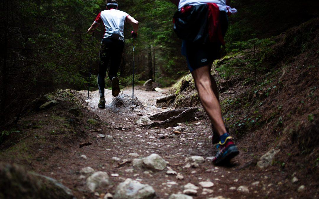 Zapatillas Trail Running, elige bien.